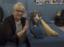 The Brooklyn Cat Café Receives Big Donation From Wellness® Natural Pet Food