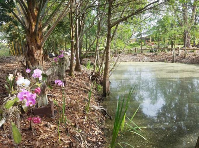 Mounts Botanical Garden of Palm Beach County to Host Annual CONNOISSEURS GARDEN TOUR