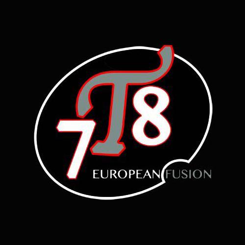 7T8 European Fusion