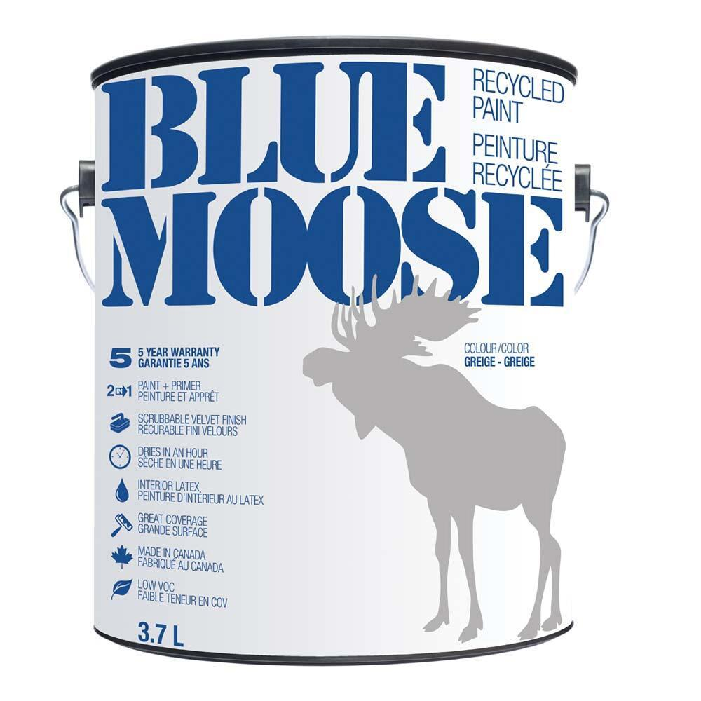 Arctic Community Welcomes Blue Moose Recycled Paint