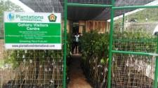 Plantations International Opens Agarwood Visitors Centre in Indonesia