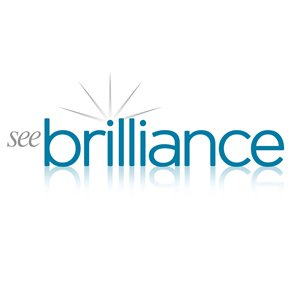 See Brilliance Ltd: Your Go-To Company For Various Restorative Cleaning Services