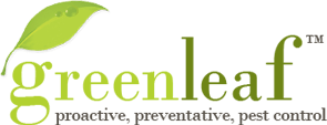 GreenLeaf Pest Control Offers Environment-Friendly Pest Control Services