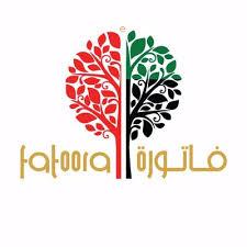CEO of eFatoora Dubai and Success in the GCC
