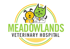 State-of-the-Art Veterinary Hospital is accepting New Patients