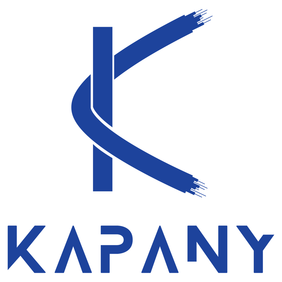 Kapany Networks Inc.