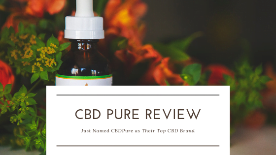 This CBD Pure Review Just Named CBDPure as Their Top CBD Brand