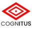 Cognitus Consulting Listed on the 2019 Inc. 5000 Fastest Growing Companies