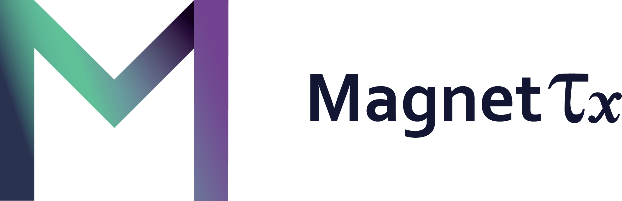 magnetTx Oncology solutions