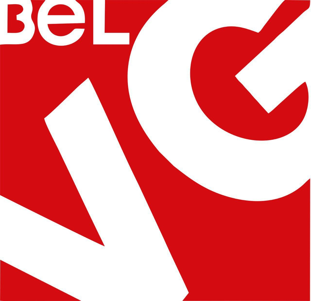 Update in BelVG Magento Support Service