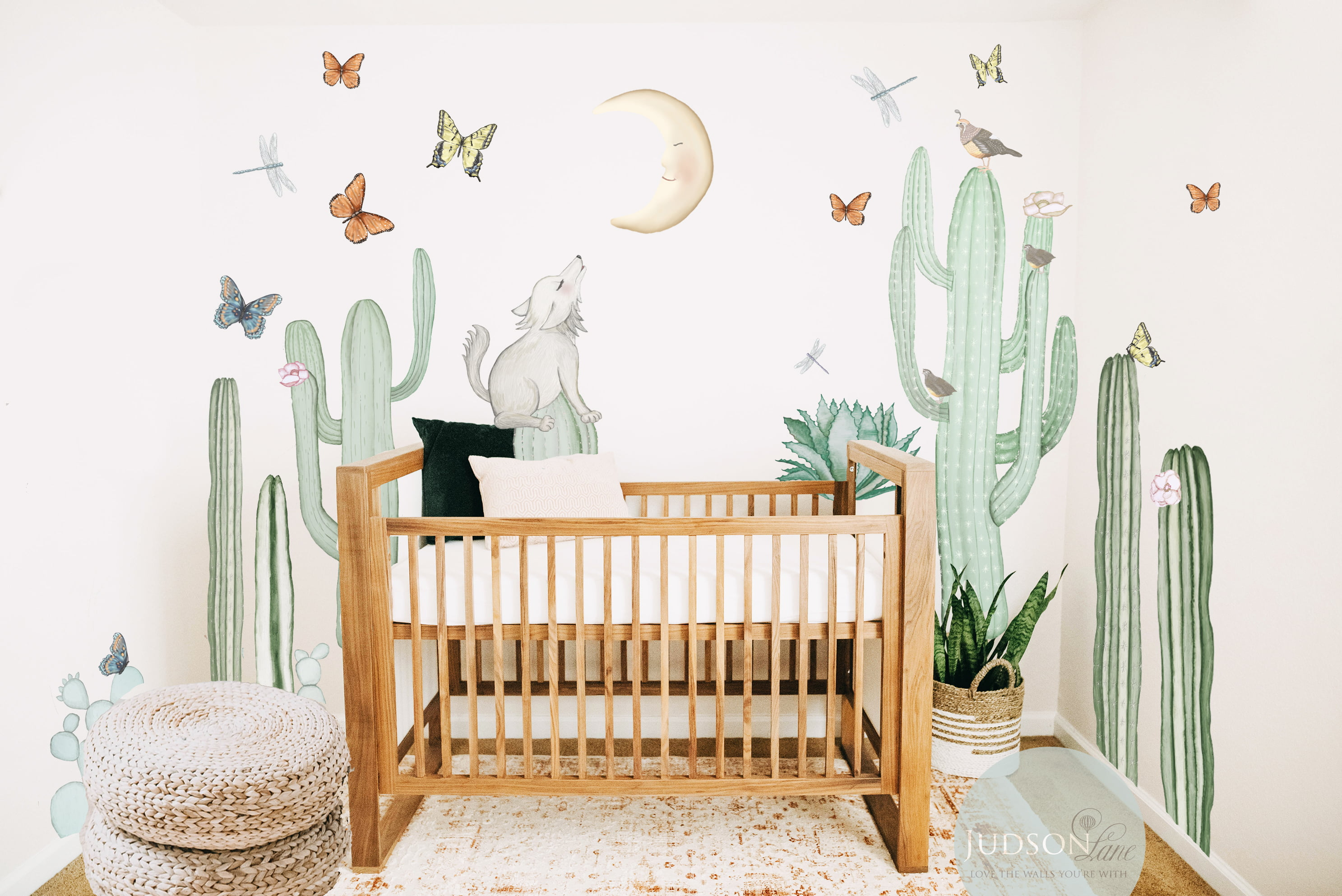 Judson Lane Wall Design Launches Sonoran Collection