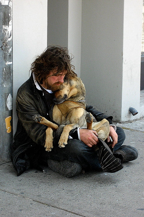 Helping Pets of the Homeless During the Holidays