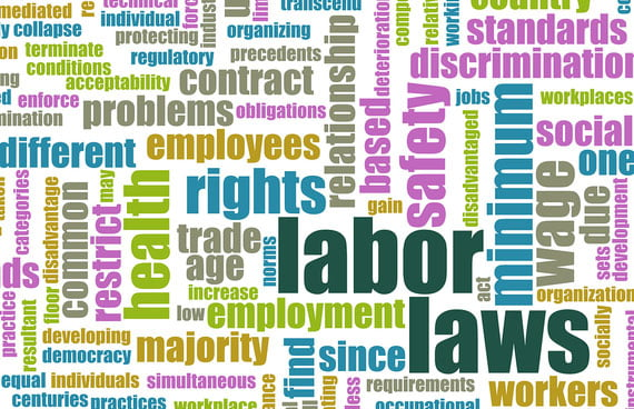 Areas of Employment Law all Businesses Should Be Aware of