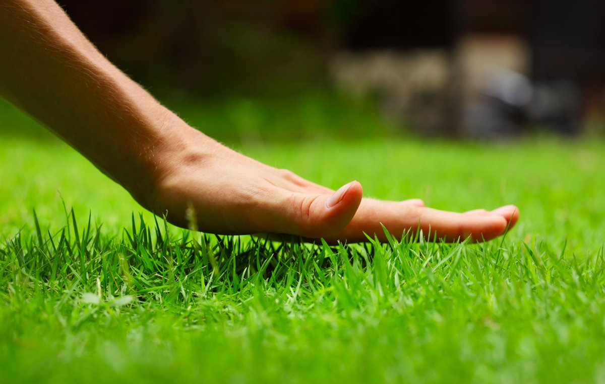 LawnStar Makes EDTA Chelated Nutrients a Thing of the Past for Homeowners