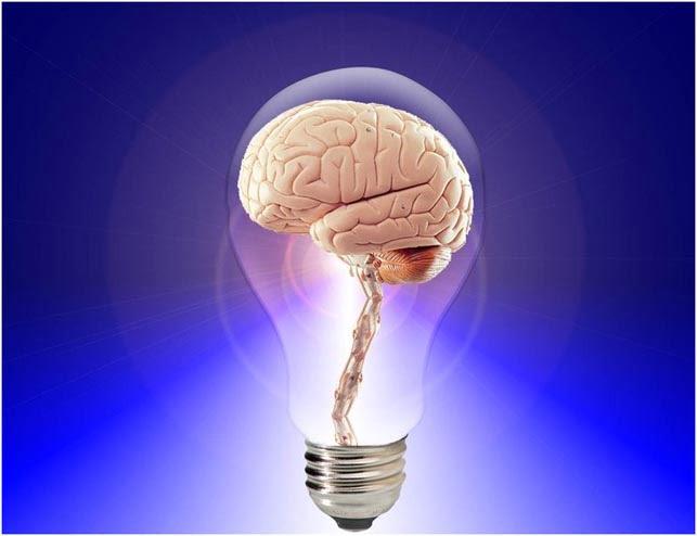 brin-think-human