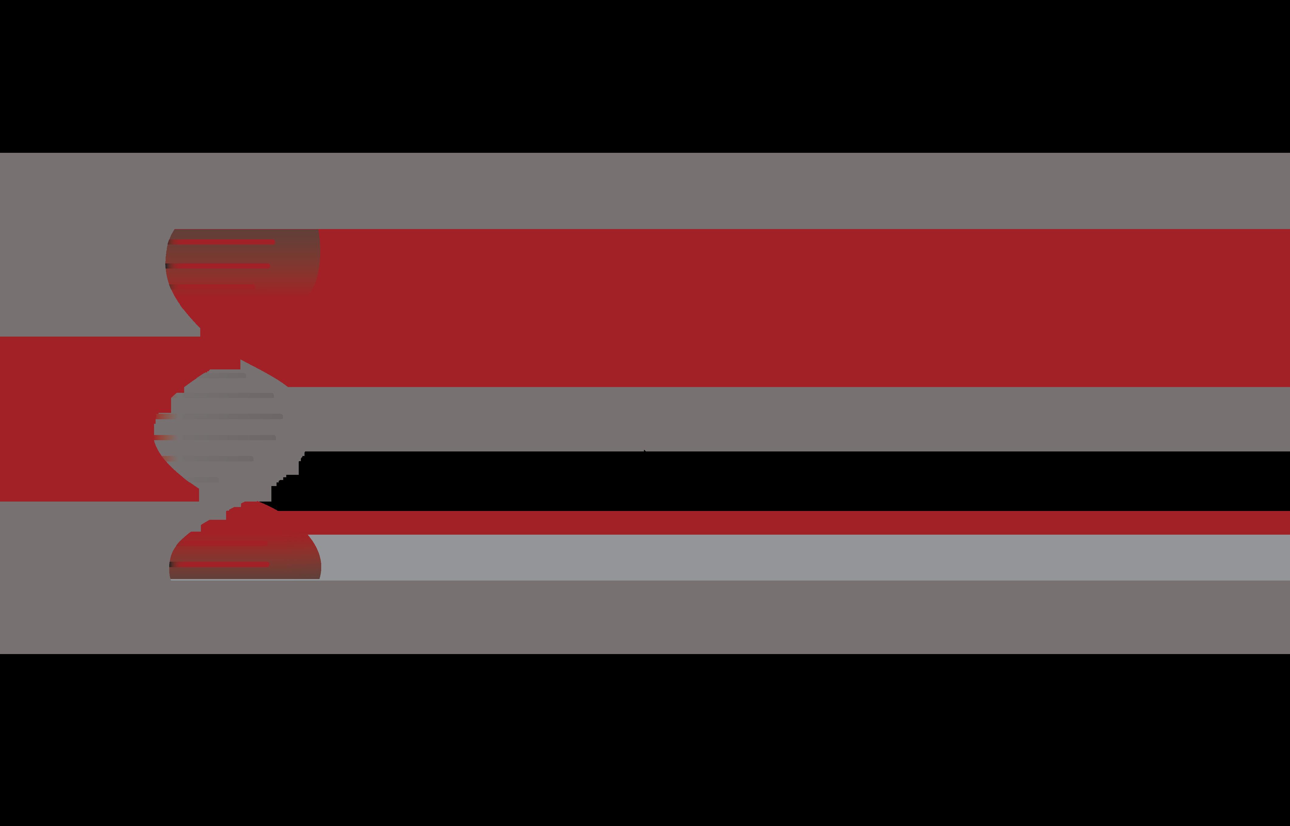 Oligonucleotide Therapeutics Society