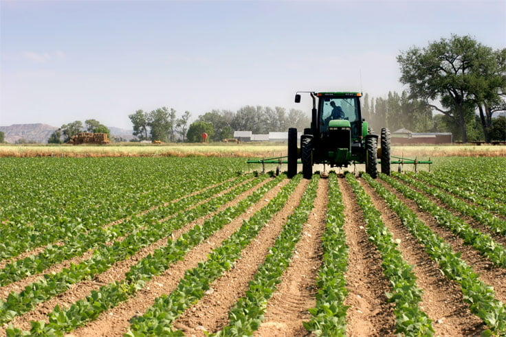 How to Start an Agricultural Business