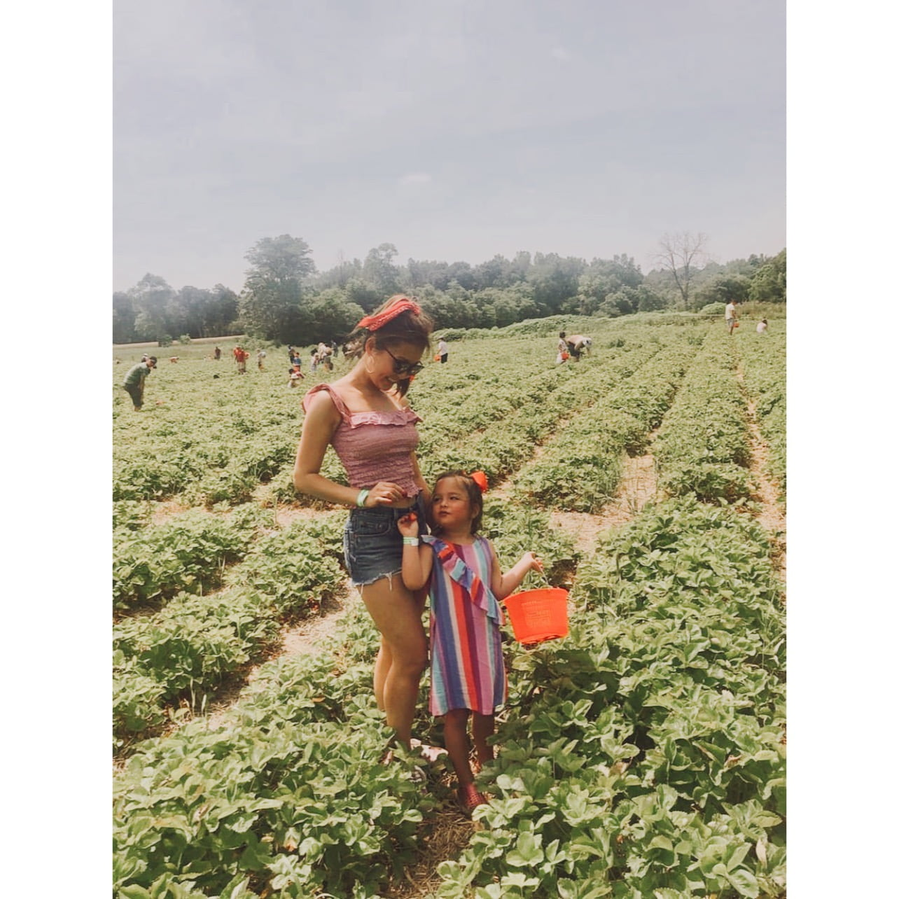 Open-Air Family Fun: How a Local, 5th-Generation, Family-Owned Farm Plans on Supplying a Safe and Fresh Getaway Amidst Pandemic