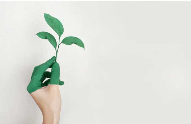 8 Myths About Sustainability and Business That We Need to Stop Believing Now