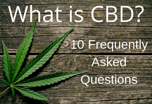 10 FREQUENTLY ASKED CBD QUESTIONS