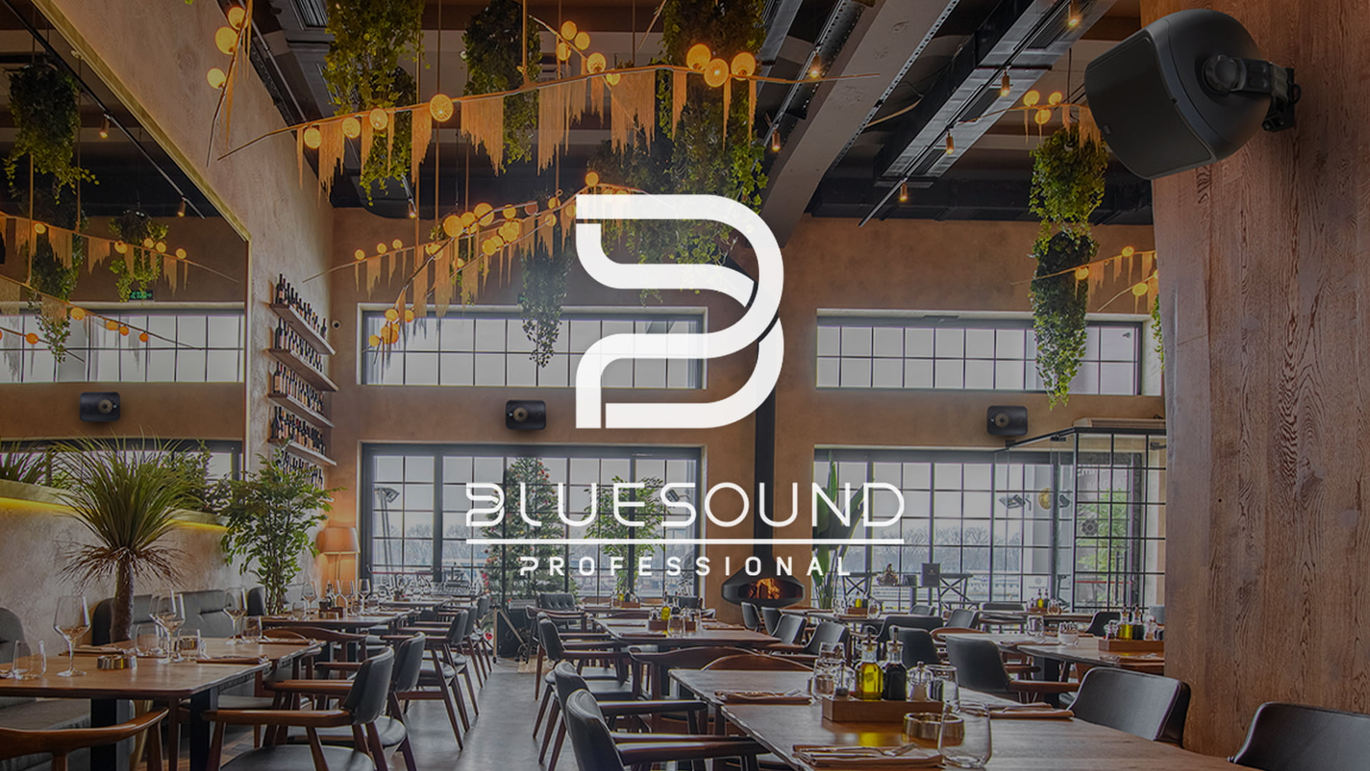 Bluesound Professional BSP1000 and BSP500 Loudspeakers Are Now Shipping