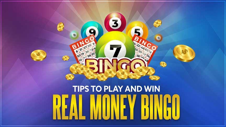 Bingo gaming essentials