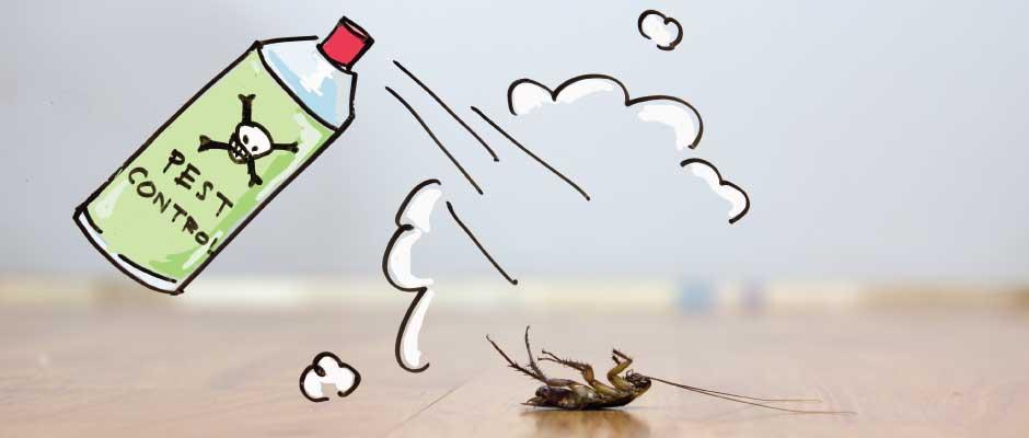 3 Exterior Home Maintenance Tips To Keep Pests Away