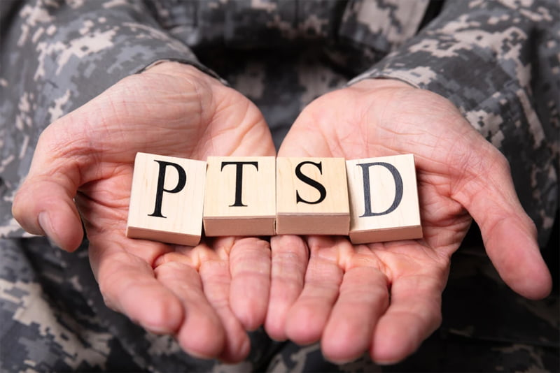 How You Can Support Veterans' Mental Health