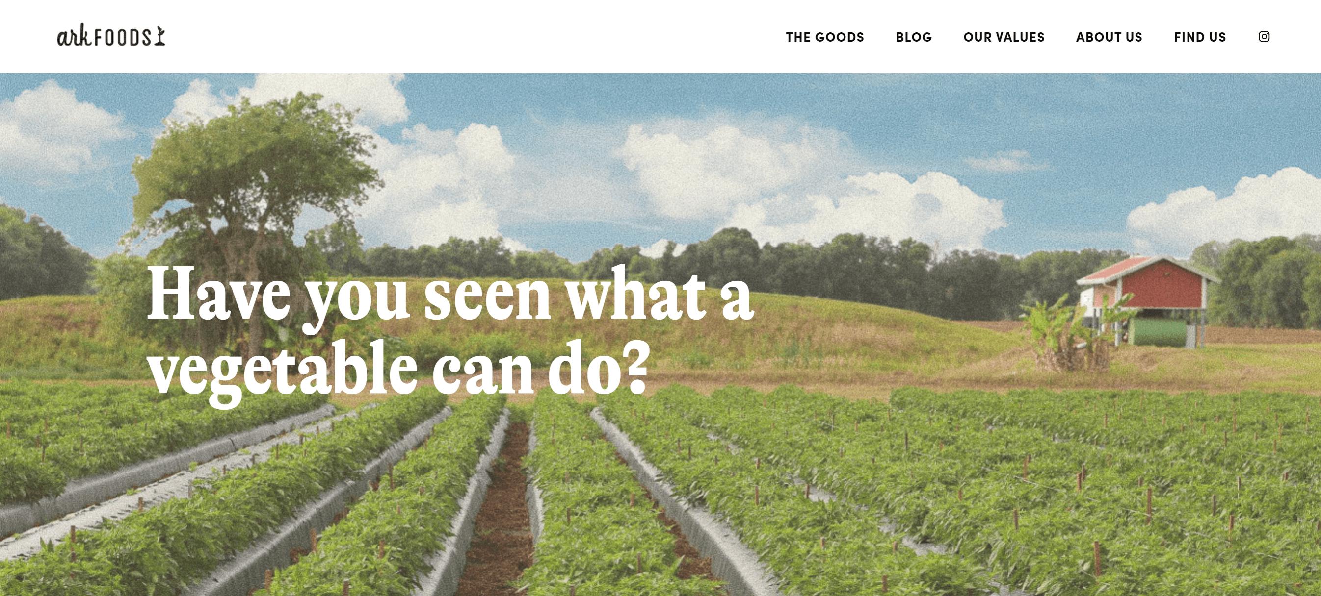 Ark Foods Launches New Website Celebrating Vegetables