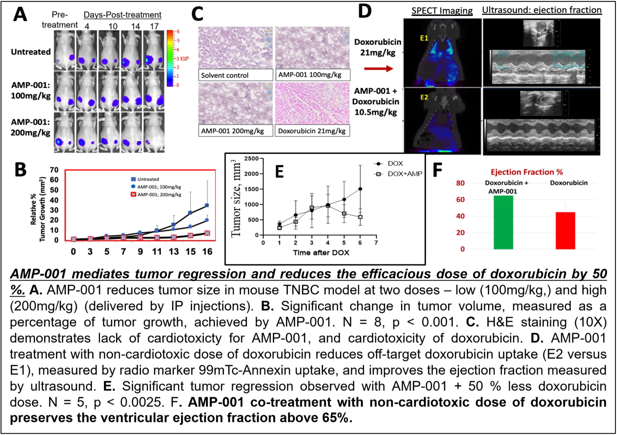 Sci-Engi-Medco Solutions Inc. Announces PLOS Publication of a Novel Mechanism of Action for Its AAAPT Technology Expanding the Therapeutic Index of Difficult to Treat Cancers