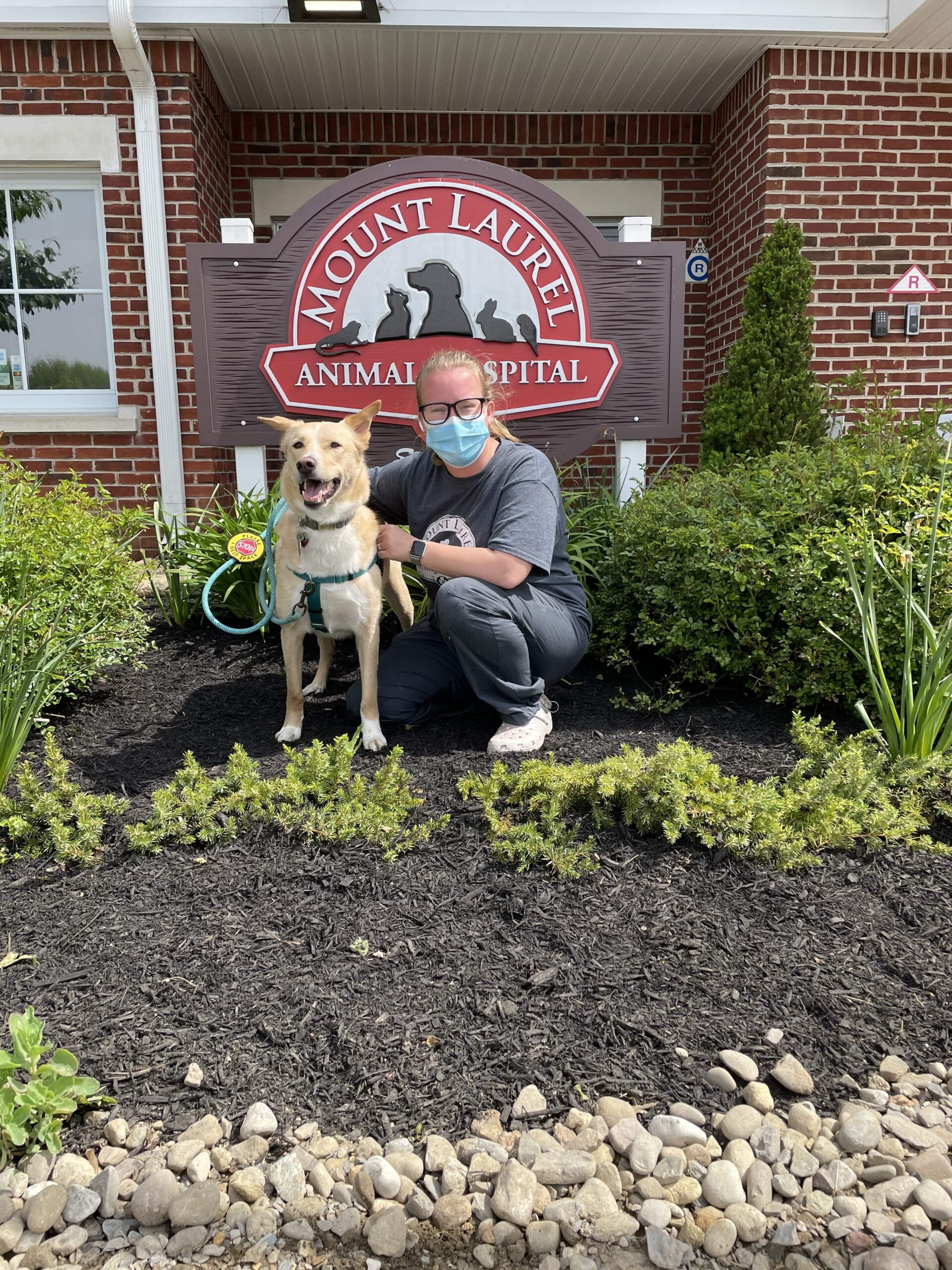 Local Veterinarian Introduces 'Happy Visits' to Calm Anxious Pets